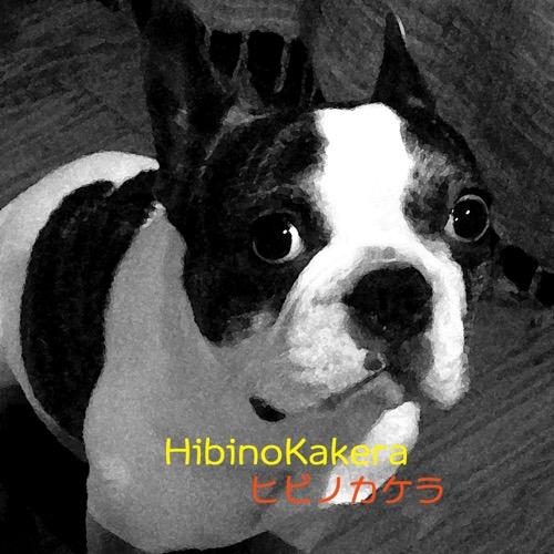 Hibinokakera12